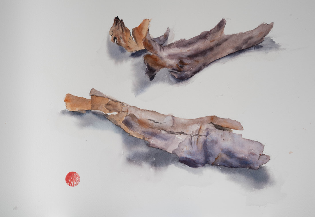 watercolour, watercolour, krsmith_artist, eucalyptus bark, eucalyptus leaves
