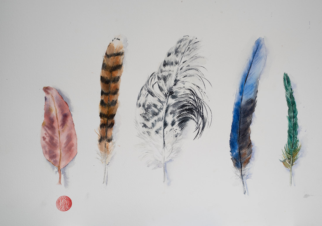 watercolour, watercolour, krsmith_artist, still_life, feathers