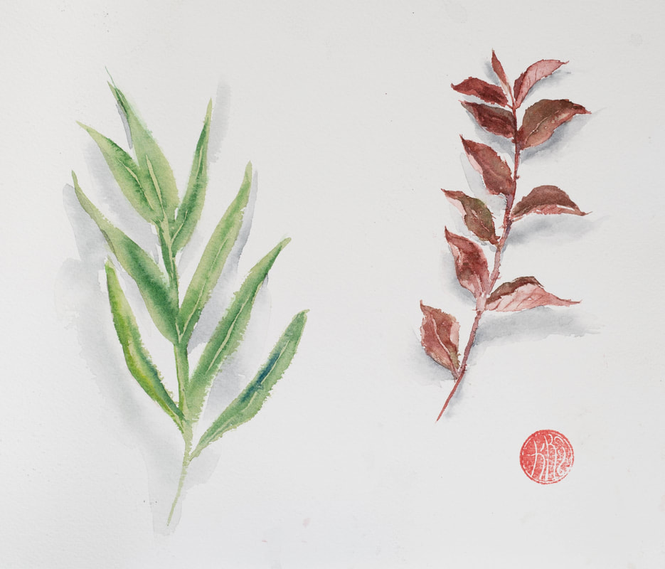 watercolour, watercolour, krsmith_artist, botanical_watercolour, leaf