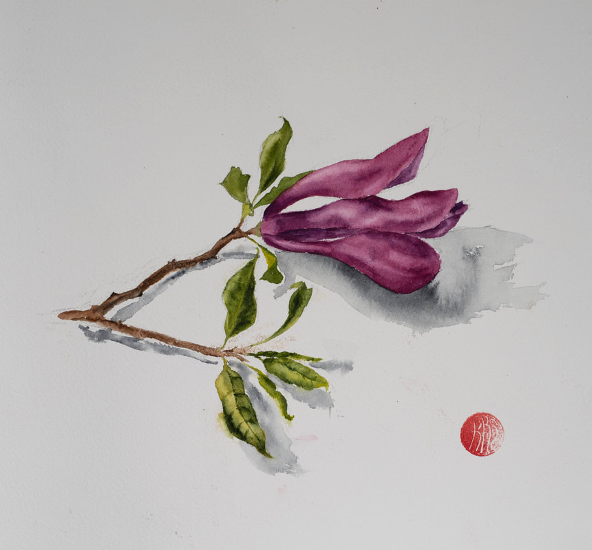 watercolour, watercolour, krsmith_artist, botanical_watercolour, magnolia